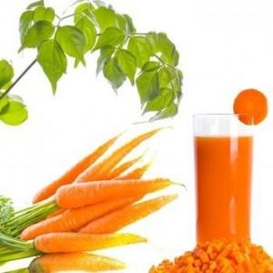 Пресен сок от моркови